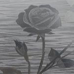 Etched Rose R04008