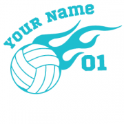 Aqua Volleyball Flame